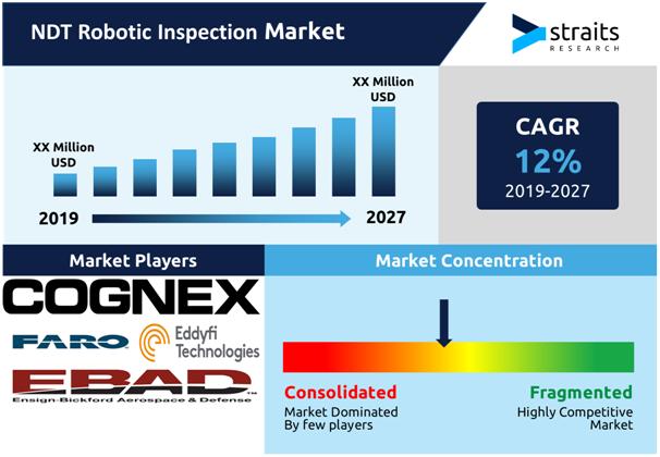 NDT-Robotic-Inspection-Market-Snapshot