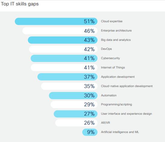 Top-IT-Skill-Gaps